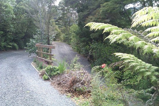 Thames, Yeni Zelanda: I can't believe people complain about this. Rustic accommodation in the NZ bush = gravel drivewa