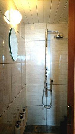Private Hotel & Spa restaurant Shinra: 部屋にはシャワーブースのみ