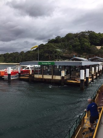 Mosman, Australia: Arriving at Zoo by ferry