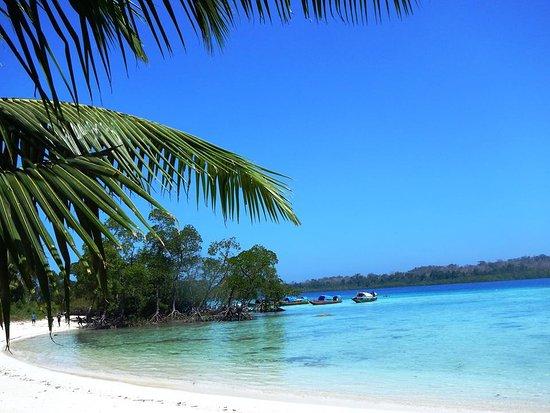 Image result for havelock andaman nicobar islands