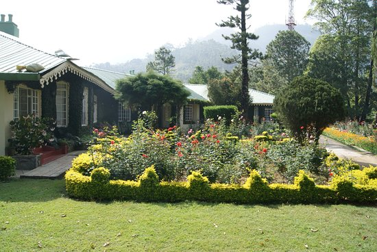 le jardin l 39 anglaise de la propri t picture of briar tea bungalows munnar idukki. Black Bedroom Furniture Sets. Home Design Ideas