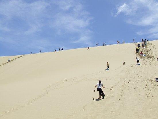Kaitaia, New Zealand: Te Puki Sand dunes