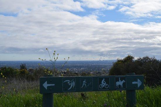 Ohalloran hill