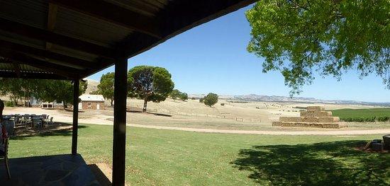 Tanunda, Australia: Panoramic view of the Barossa Valley from the front verandah.