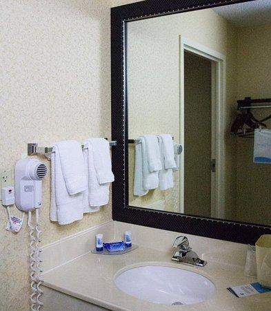 Streetsboro, Огайо: Guest Bathroom