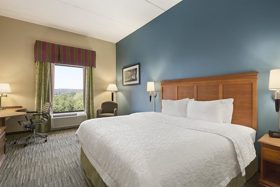 Hampton Inn Birmingham I-65/Lakeshore Drive: King-sized Bed