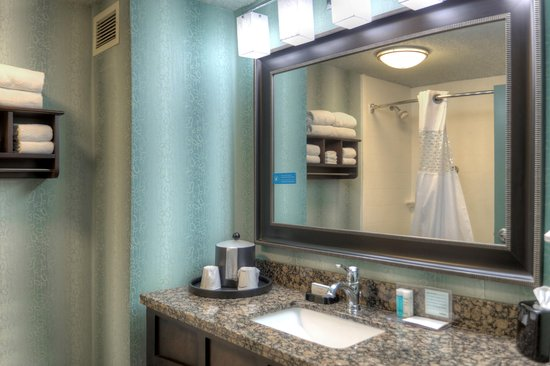 Hampton Inn St. Simons Island: Guest Bathroom