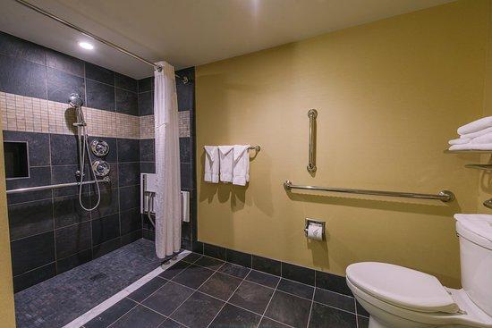 Mount Kisco, Estado de Nueva York: Handicap Accessible Shower