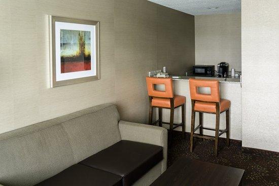 Big Rapids, MI: King Bed Suite Wet Bar Area