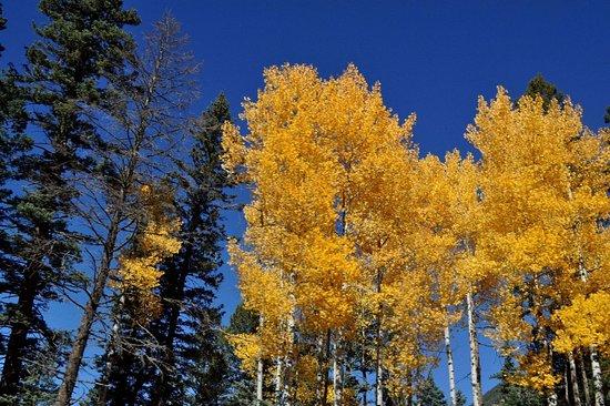 Walsenburg, Kolorado: Spectacular Views