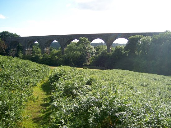 Okehampton, UK: Lake Viaduct.