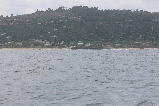 Plettenberg Bay, Sudáfrica: View of Enrico's restaurant - from Enrico's Fishing Safari