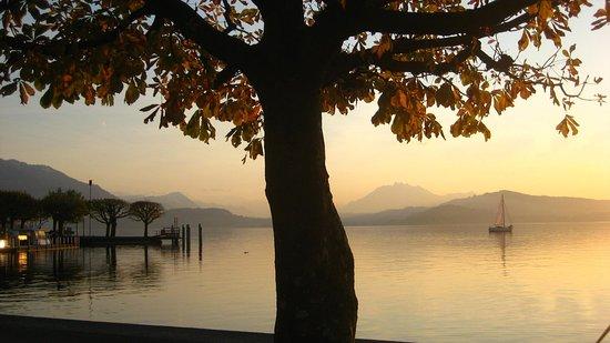 Lake of Zug