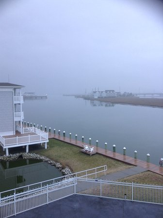 Comfort Suites Chincoteague: View from balcony