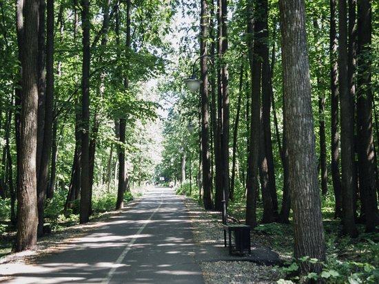 Bashkortostan Forester's Park