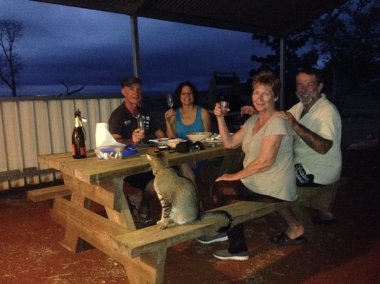 Malanda, Australia: New Years Eve at Dunkley's Place! Magic!