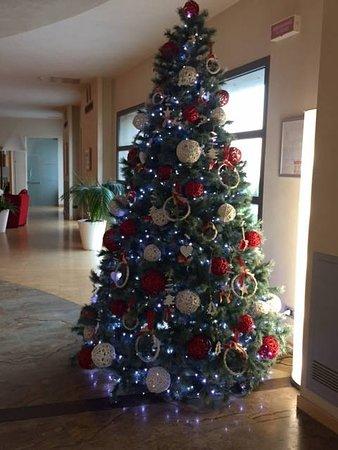 Albero Di Natale Anni 70.Albero Di Natale Picture Of Ristorante Del Grand Hotel Garden Barile Tripadvisor