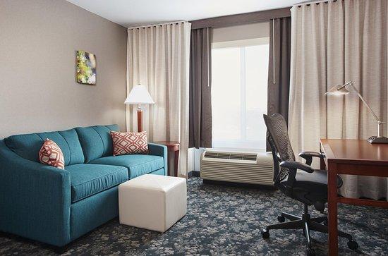 Hilton Garden Inn Schaumburg: Sofabed
