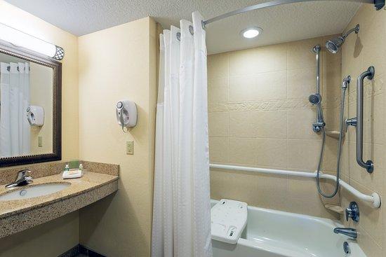 Statesboro, GA: Premium ADA/Handicapped Bath with Sit-In Tub