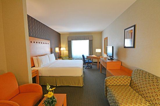 Holiday Inn Express Hotel & Suites Monterrey Aeropuerto: 1 King Bed Suite Nonsmoking