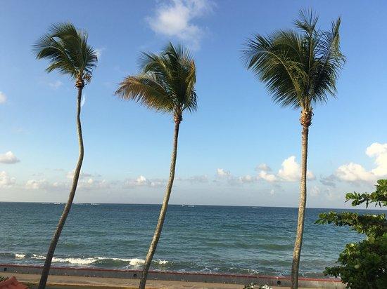 Tres Palmas Inn: View from deck.