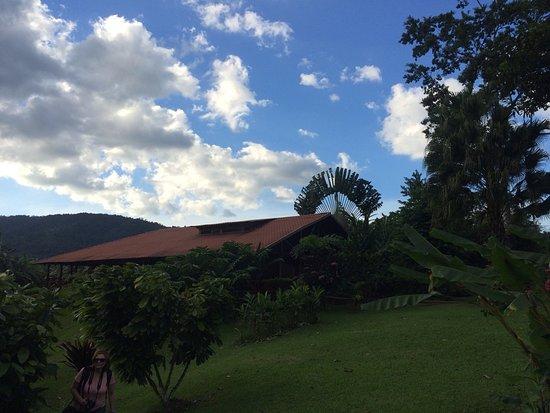 Rincon de La Vieja, Kostaryka: La Anita Scenic view from walking path