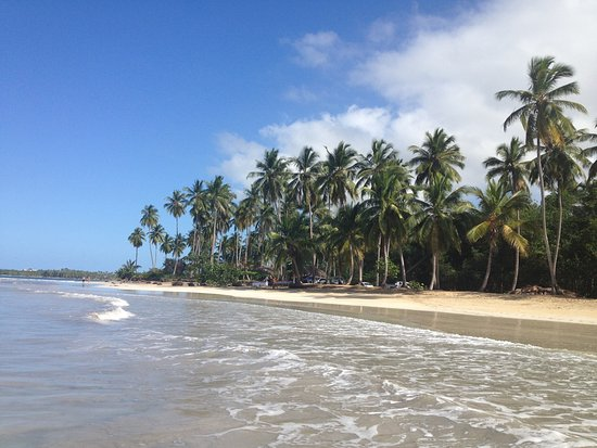 Playa Coson Beach Las Terrenas 2018 All You Need To Know Before Go With Photos Tripadvisor