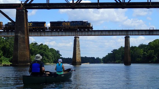 West Columbia, SC: Canoeing on the Congaree River