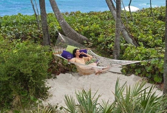 Jupiter Beach Resort: Hammock