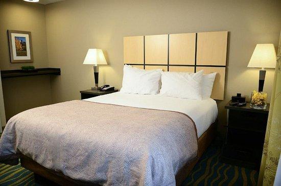 Denver- Brighton Queen Bed Guest Room