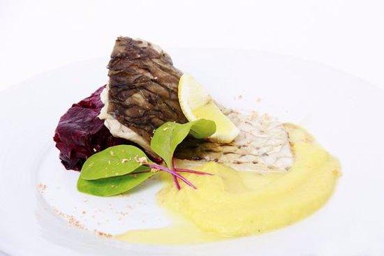Kromeriz, Repubblica Ceca: Filet kapra, dýňové pyré, gratinovaná červená řepa - Filet of karp, pumpkin puree, beet root