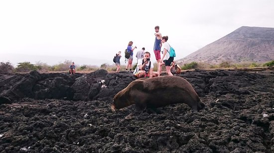 Scuba Galapagos: Tourists in the enchanted islands