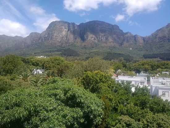 Vineyard Hotel: View from Mountain view room