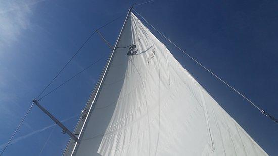 Charleston Sailing Private Day Charters Photo