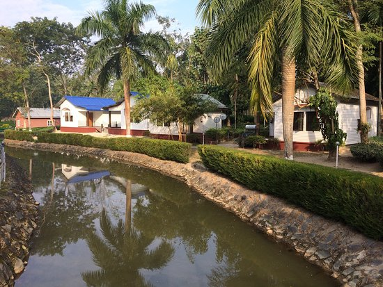 Dhanshree Resort: Nicely maintained, helpful staff, Good food