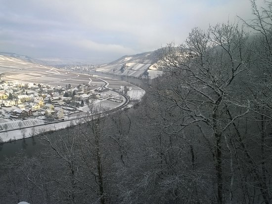 Bilde fra Minheim