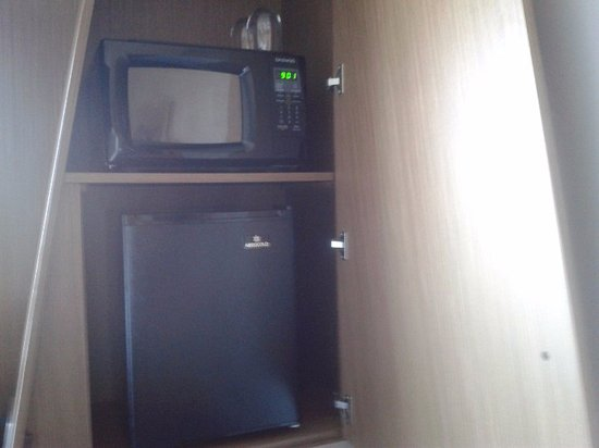 Littleton, MA: Microwave and refrigerator in chic nook