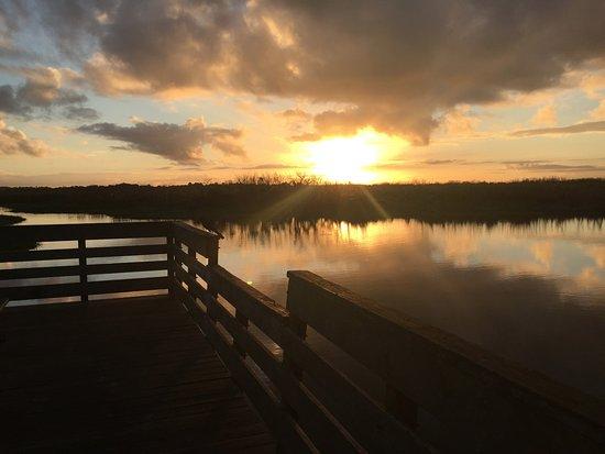 DeBary, FL: Sunrise Christmas morning :)