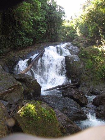Waterfall in rain forest in Drake Bay