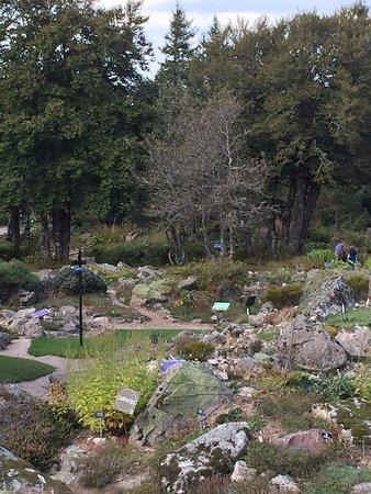 Jardin d 39 altitude du haut chitelet vosges photo de - Jardin d altitude du haut chitelet ...