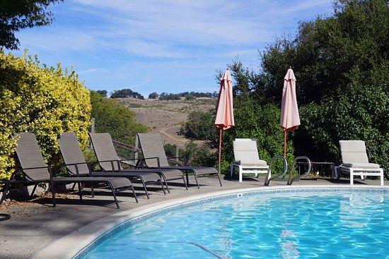 Cloverdale, Califórnia: Pool with valley vistas