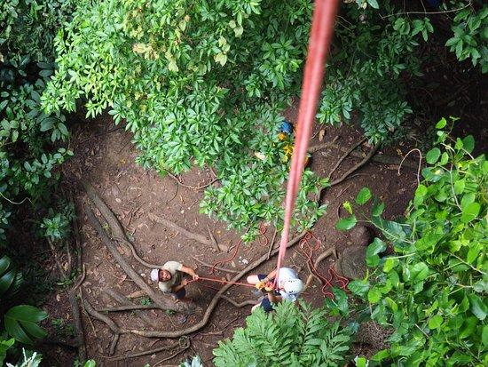 Manzanillo, Costa Rica: Climbing, easier than it looks!