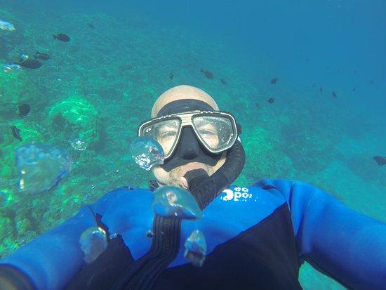 Wailuku, HI: Underwater selfie, bring your GoPro!