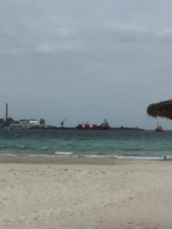 Hamnen - Picture of Playa de Alcudia, Port dAlcudia - TripAdvisor