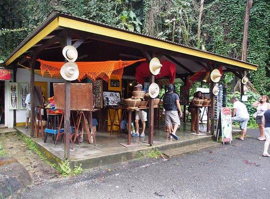 Basse-Terre Island, Guadeloupe : Maison de la forêt