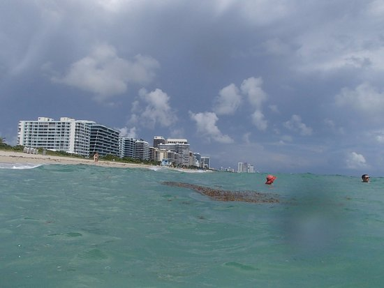 Residence Inn By Marriott Miami Beach Surfside Playa