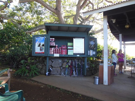 Kealakekua, HI: Tasteful displays