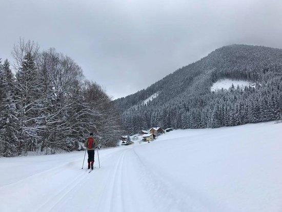 Faistenau, Austria: Tiefbrunnau trail