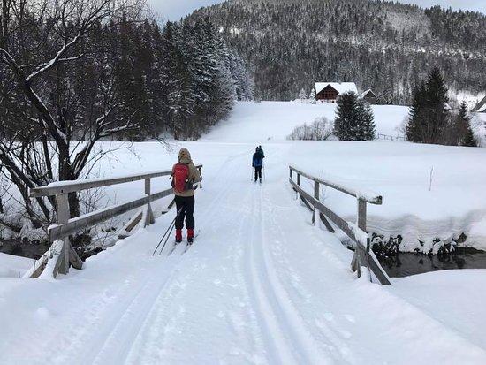 Faistenau, Αυστρία: Tiefbrunnau trail