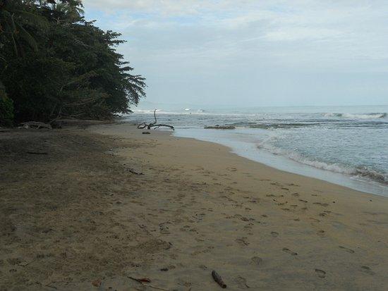 Zdjęcie Cabinas Punta Uva